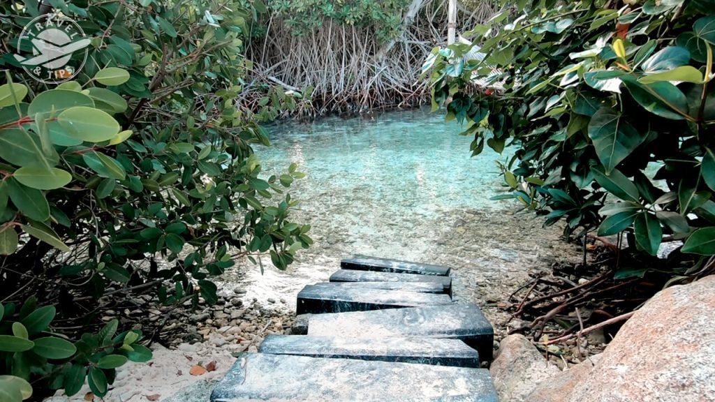 Lugares mágicos en Renaissance island