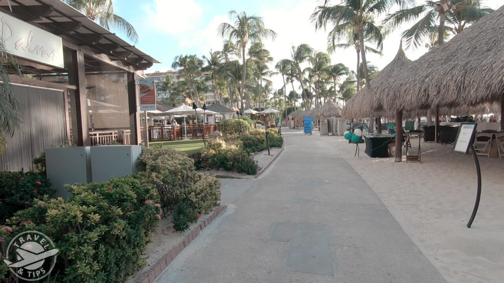 Camino en palm beach